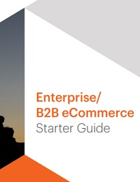 Enterprise/ B2B eCommerce Starter Guide