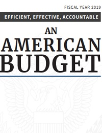 Efficient, effective, accountable an american budget