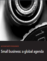 Small business: a global agenda