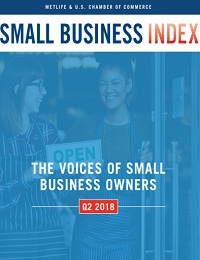 The voices of small business owners
