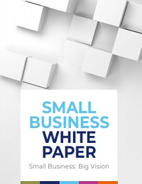 Small business white paper:Big Vision