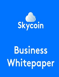Skycoin Business Whitepaper