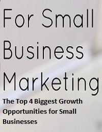 THE TOP 4 BIGGEST GROWTH OPPORTUNITIES FOR SMALL BUSINESSES
