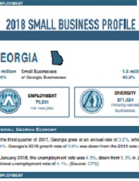 Georgia Small Business Economic Profiles for 2018