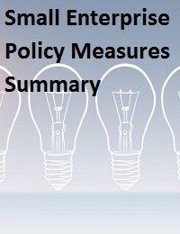 Small Enterprise Policy Measures Summary