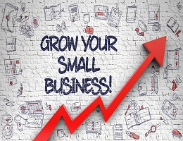 HOW TO GROW A SMALL BUSINESS: STRATEGIES TO SECURE AND FULFILL THE FIRST ORDER
