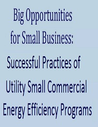 Big Opportunities for Small Business: Successful Practices of Utility Small Commercial Energy Efficiency Programs