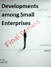 Developments among Small Enterprises